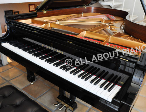 "Youngest ""used"" STEINWAY & SONS Model B SPIRIO on the market"