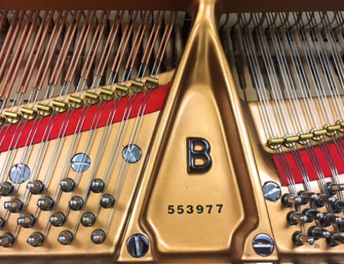 new in 2001, one-owner STEINWAY & SONS Model B Grand Piano