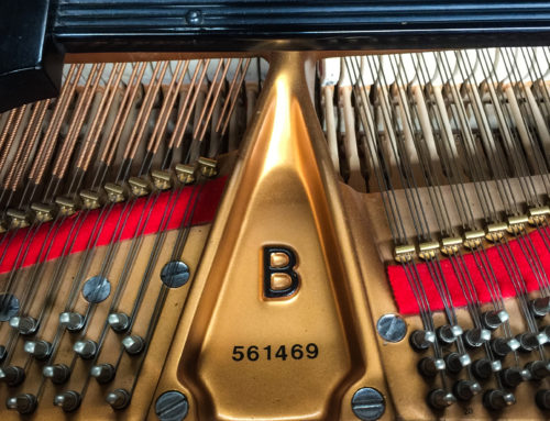 new in 2003, STEINWAY & SONS Model B Grand Piano