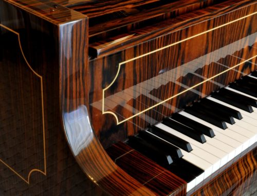 Only one available in the U.S. – BOSENDORFER 225 Senator Macassar