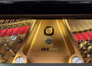 Portfolio Archive - My Perfect Piano founded by Louis