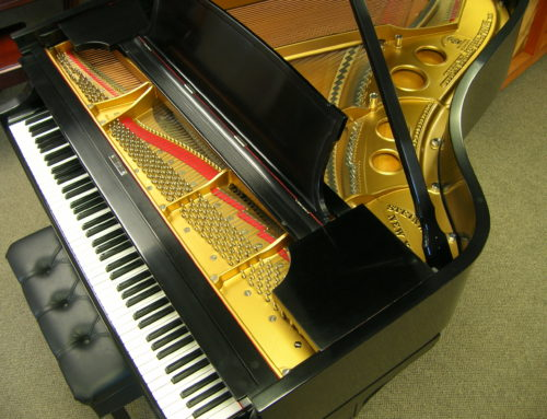 top-tier restoration, STEINWAY & SONS Model O Grand Piano