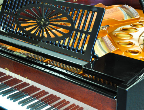 "TIME TRAVELER ""Limited Edition"" BOSENDORFER 200 ""Millenium"""