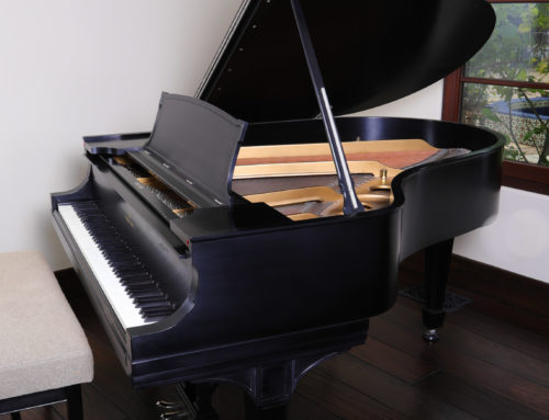 "STEINWAY & SONS Model O 5'10"" Grand Piano"