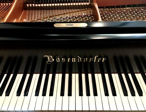 showroom clean BOSENDORFER 185 CS  – 6'1″ Grand Piano