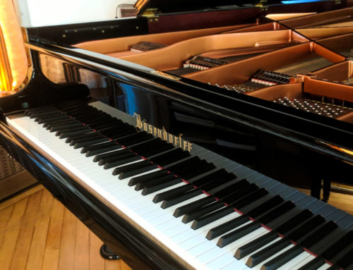 new in 2008 BOSENDORFER Model 225 Semi Concert Grand Piano