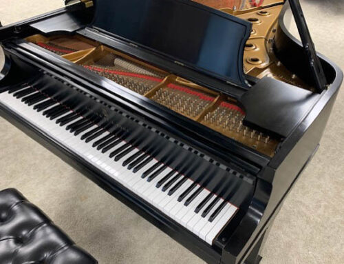 new in 1987 STEINWAY & SONS Model B Grand Piano