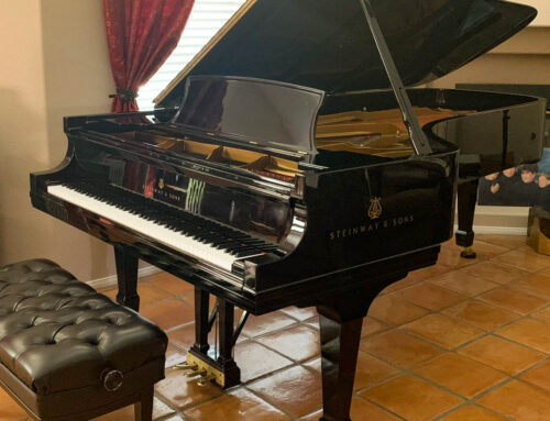 new in 1996 STEINWAY & SONS Model D Concert Grand Piano